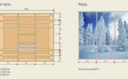 Интерьер дизайн шкафа купе в